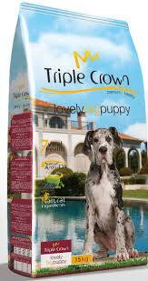 Triple crown lovely BIG PUPPY DOG 15kg